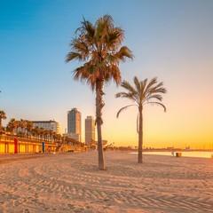 Barceloneta la spiaggia di Barcellona