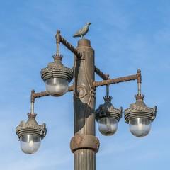 Particolare dellilluminazione su Passeig de la Ribera