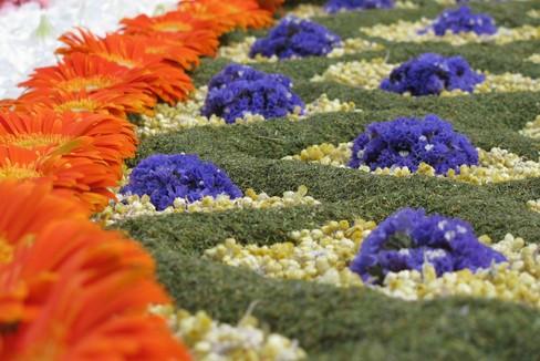 Corpus Christi 2018 - Festival dei tappeti di fiori